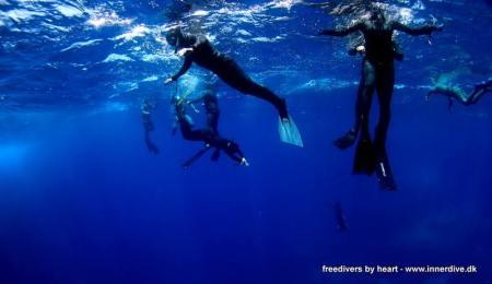 Ved at gøre klar til et dyk