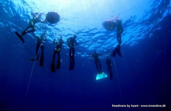 Før vi dykker på et vrag (jeg er den lyse monofinne)