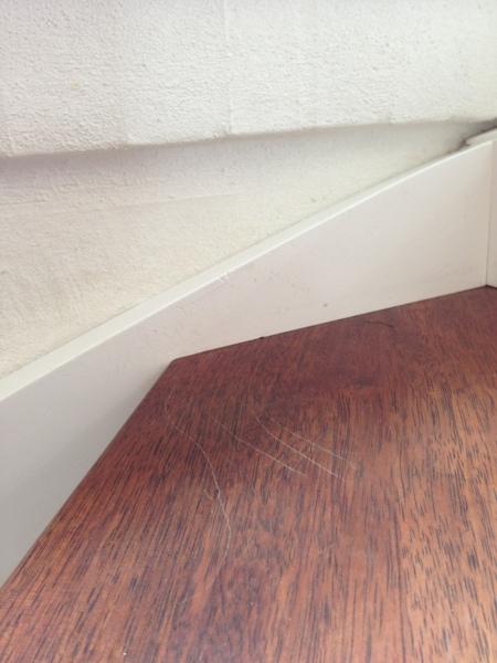 3de trin og hjørnet på trappen. Rotten bruger hjørnet til at bremse helt ned med flere ridser og så skidt fra pelsen smurt ud på væggen.