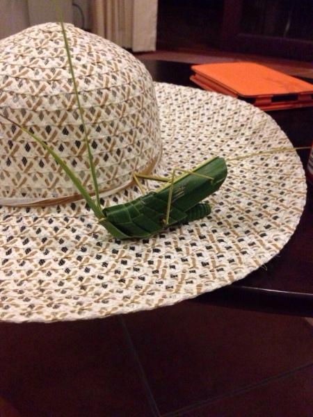 Græshoppen er et foldet græsstrå
