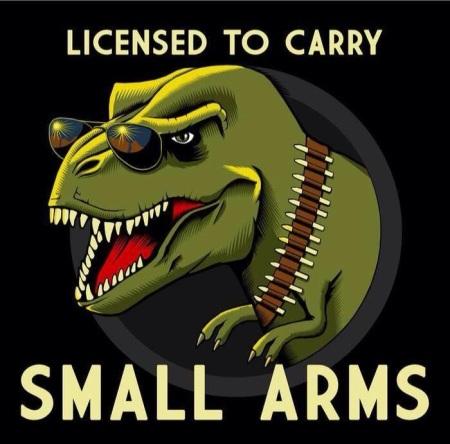 310314_smallarms